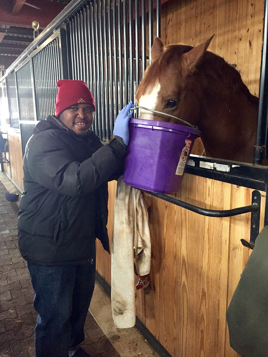 Equine physical therapy - Equine Therapy Equine Therapy Also Referred To As Horse Therapy Equine Assisted Therapy And Equine Assisted Psychotherapy Is A Form Of Experiential